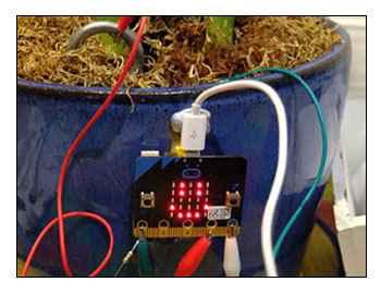 tecnologia para niños en Arrasate. Micro:bit, happy plant